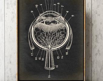 EYE ANATOMY POSTER, Eyeball Chart, Scientific Illustration, Anatomical Drawing, Anatomy Print, Medical Art, Doctor, Art