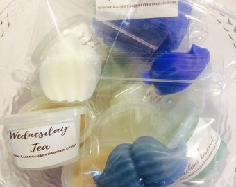 Wax sample pack / wax scent shots / wax melts