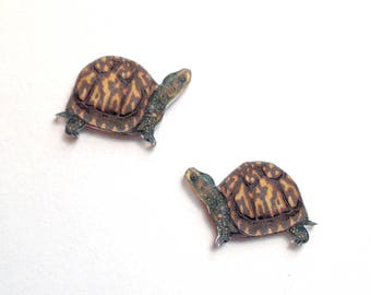 Handcrafted Plastic Eastern Box Turtle EBT Herp Earrings Gifts for Her ebt18a