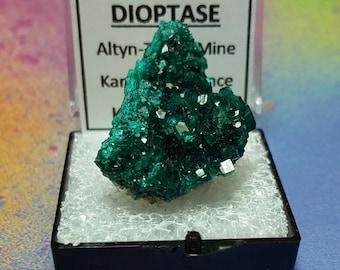 Vente DIOPTASE Top qualité pièce lumineux bleu sarcelle vert cristal minéral spécimen dans boîte guilleret du Kazakhstan