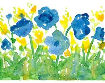 Poppy Flowers Royal Blue Yellow Wildflowers Watercolor Original Painting