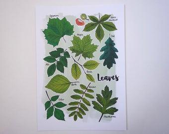 Leaves Nature Print