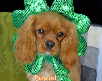 St Patricks Day Dog-Cat  collar shamrock hat costume