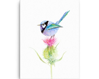 CANVAS Fairy Wren on Thistle Watercolour Painting Print
