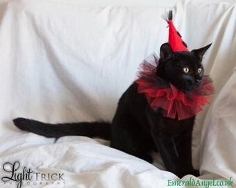 Pet Clown Hat, Costume, Halloween