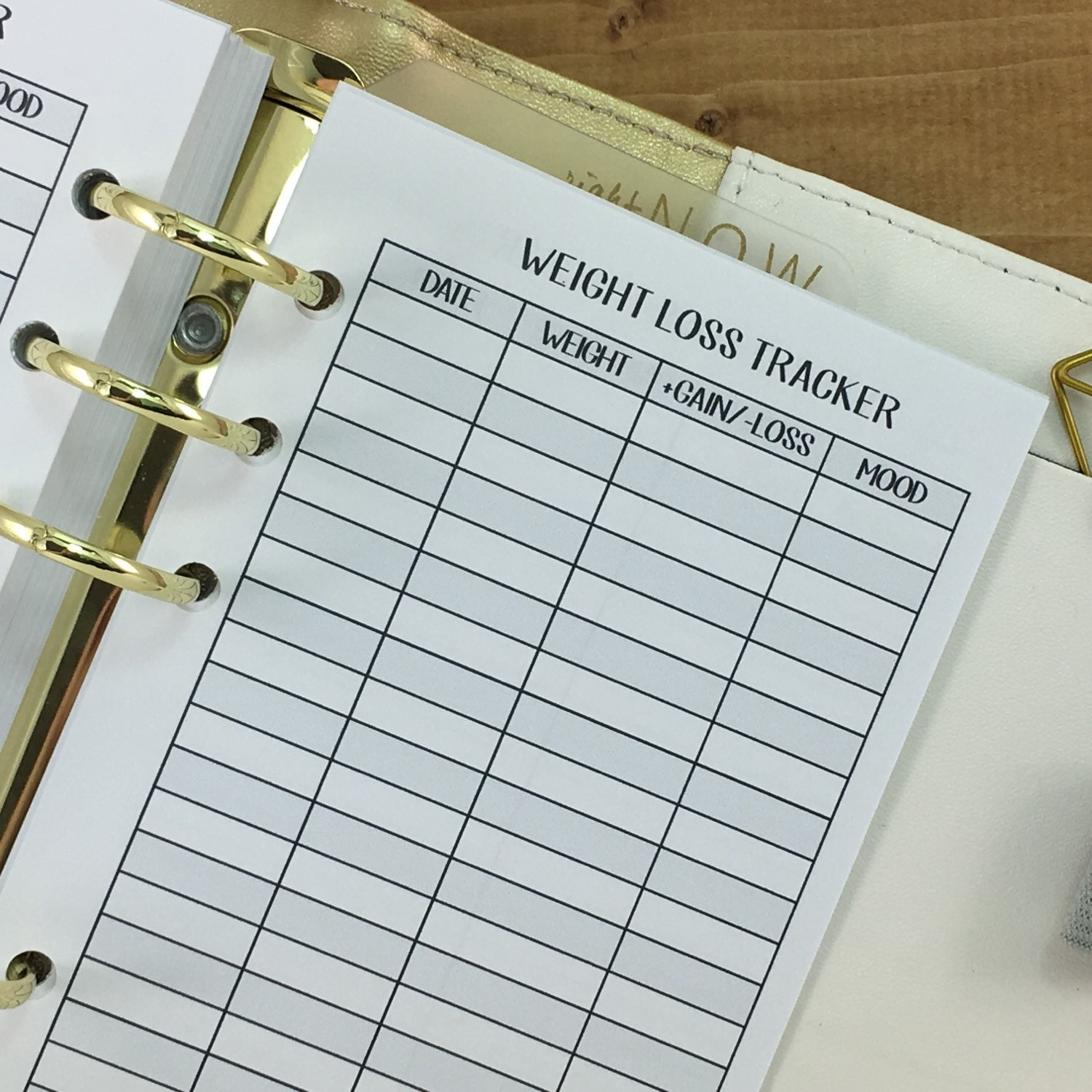 personal weight loss tracker printed planner insert weight