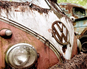 Pink VW Bus in the woods Photograph