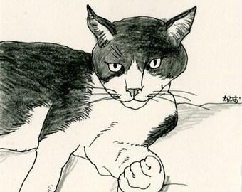 Cat original drawing - P017November2015