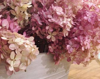 Dried hydrangea with aged and painted galvanized tub.