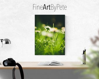 Daisy digital download, flower, grass, instant, printable, print, prints, nature art, daisies, green