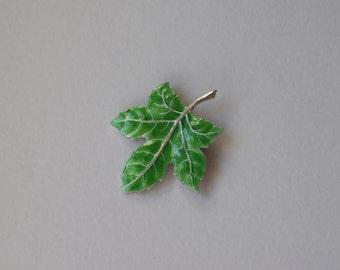 Silver leaf brooch and enamel