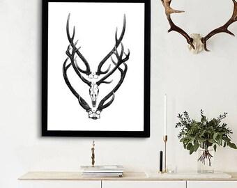 Deer Antlers Poster - Animal Antlers Print - Vintage Antlers Illustration - Antique Deer Anatomy - Skeletal Anatomy - Deer Biology Art Print