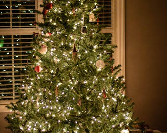 Two Digital Stock Photos of a Country Christmas Tree with gifts lit up softly at night