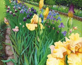 The Iris Farm, Original Oil Painting, 9 x 12 in.
