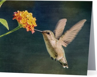Hannah Lantana Hummingbird  - blank note card, Gifts for her, Gifts for mom, Gifts for bird lovers, Gifts for nature lovers