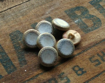 Dots shank-back ceramic button set