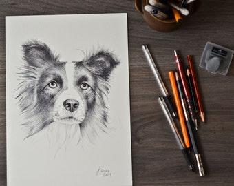 Pet Portrait, Custom Pet Portrait Drawing from Photo, Pet Drawing Commission Art, ORIGINAL Art, Personalized Pet Loss Gifts, Pet Memorial