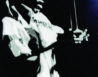 Jimi Hendrix BOLD AS JiMI by Nona Hatay