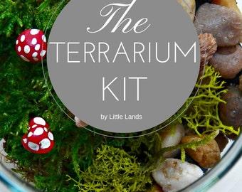 DIY Terrarium Kit