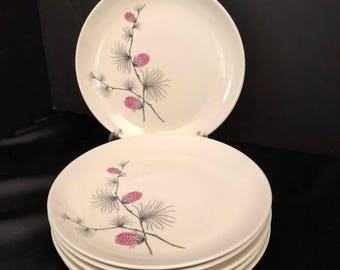 Canonsburg Wild Clover Salad Plate set 6 by CANONSBURG Steubenville SKYLINE/WILD Clover Steubenville - Wild Clover Pattern /Pink Pinecone