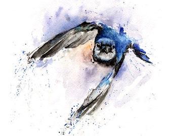 BLUE JAY PRINT - blue jay art, blue jay watercolor, bird lover gift, flying bird, bird art print, watercolor bird print, bird home decor
