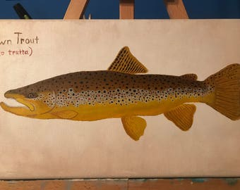 Brown Trout hand painted fishing illustration original painting