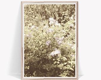 Floral Print,Flower Photography,Floral Decor,Flower Poster,Flower Print,Flower Prints Wall Art,Floral Wall Art,Flower Wall Print,Flower Art