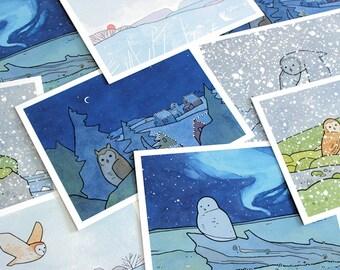 Mixed Owl Christmas Card Set - 10 cards