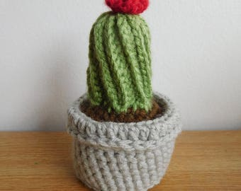 Crochet Stuffed Cactus with little flower - Made to Order