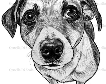 Customl drawing pet portrait dog
