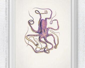 Vintage octopus n 14- sea life print-Marine  sea life illustration A4 print- vintage natural history SAS152