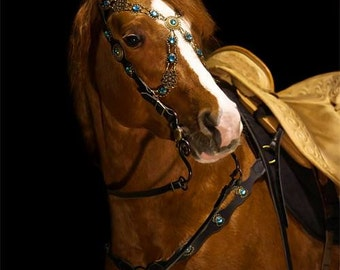 Handmade Bridle + breastplate Blue Baroque
