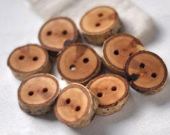tree branch buttons • 12  birch wooden buttons  • birch wood button