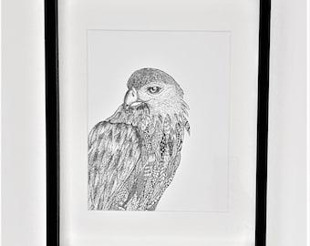 Eagle A4 print | Eagle doodle print