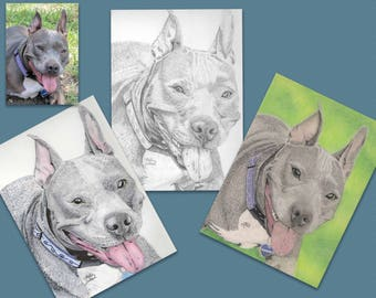 Custom Pet Portrait, Colored Pencil, Watercolor, Graphite,  Pet Portrait, Dog Lover Gift, Pet Memorial Gift, Animal Lover Gift,