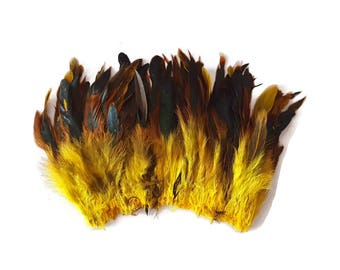 Long yellow feathers