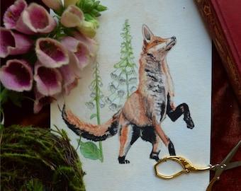 Fox and the Foxglove
