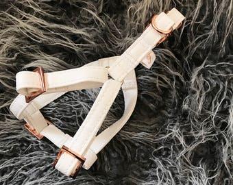 Klettergurt Hund : Verstellbarer klettergurt für hund modell minze