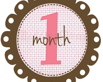 Monthly Baby Girl Stickers, Milestone Stickers, Baby Month Stickers, Monthly Bodysuit Sticker, Monthly Stickers (AVen)