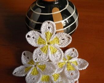 Plumeria  Crocheted flowers applique Set of 5 flowers Decorative flowers Gift decorations Wedding decor