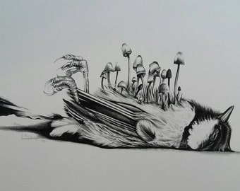 Beautiful Death Blue Tit with Toadstools A3 Art Print