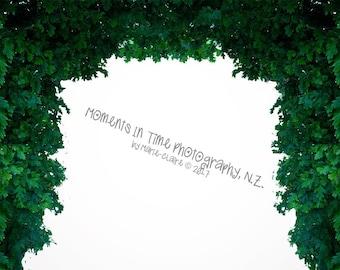 MIT Leafy Edge Secret Garden Digital Overlay