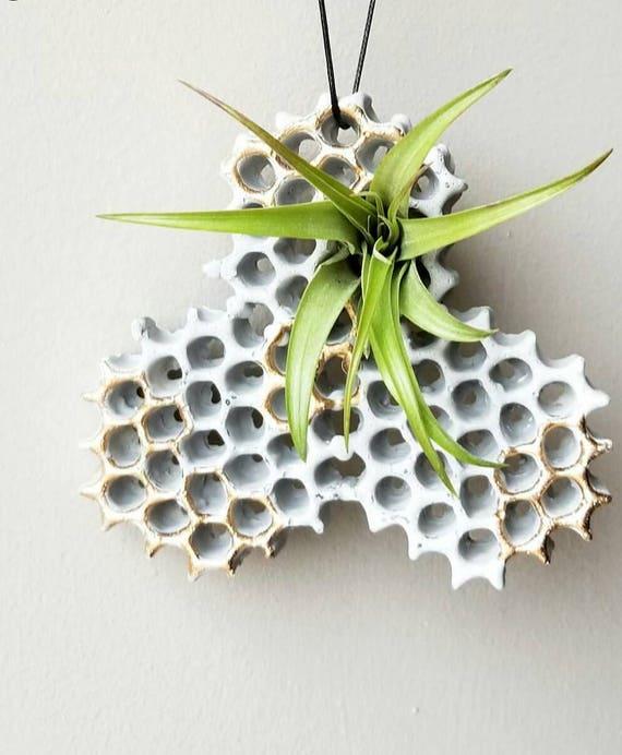 Hanging Planter/Concrete Planter/Housewarming Planter/House Planter/Indoor Planter/Plant Hanger/honeycomb/bees/honey/Plant Lover gift