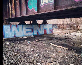 Went graffiti - Bronx NYC 2014 photo 8x10