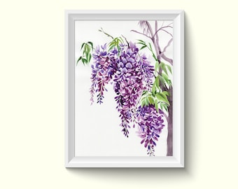 Wisteria Flowers Watercolor Painting Poster Art Print P352