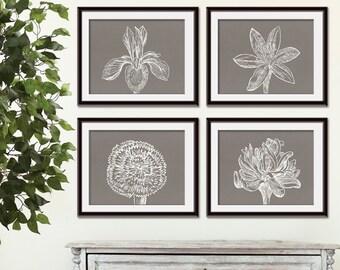 Flower Heads (Series C2 - Horizontal) Set of 4 - Art Prints (Featured in Gravel Silk) Colors Customizable