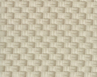 Bella Verona Collection by Wing and a Prayer for Timeless Treasures c8585 Beige