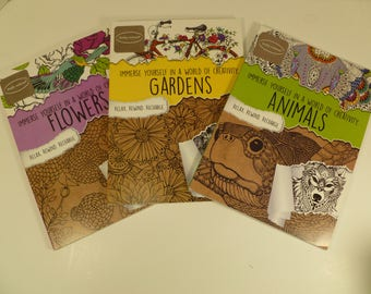 Set of 3 Kathy Ireland Adult Coloring Books for Relaxation