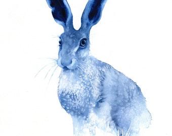 Blue hare I'm All Ears watercolour print -  A3 giclee art print