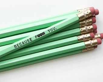 Pencil Set. Engraved Pencils. Funny Pencils. Because F*ck You. Mature Pencil Set.